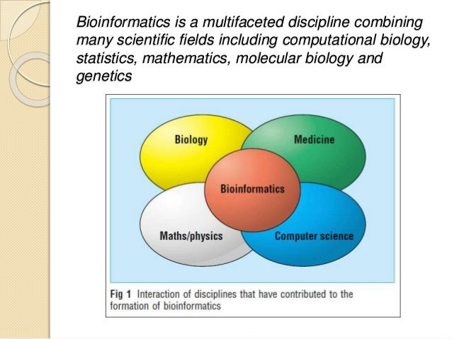 applications of mathematics in various fields